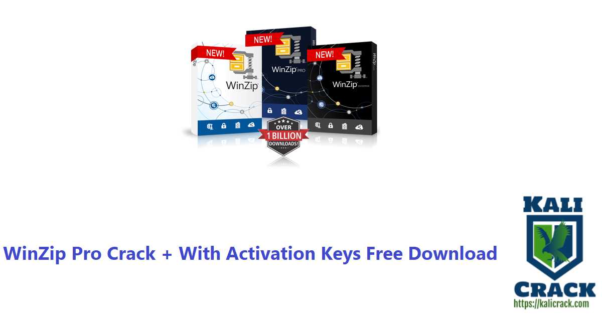 WinZip Pro Crack + With Activation Keys Free Download